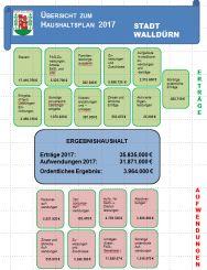 Grafische Übersciht Haushalt 2017 (PDF)