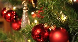 Weihnachtsboutique - Tannenzweige