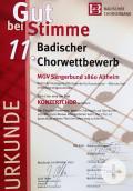Konzertchor Altheim
