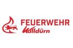 Logo Feuerwehr Walldürn