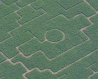 Maislabyrinth1