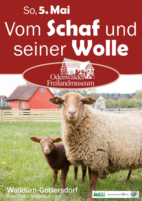 Vom Schaf und seiner Wolle