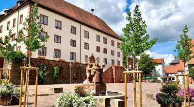 der Verwaltungssitz der Stadtverwaltung, das Walldürner Schloss mit Schlossplatz und Buntsandseinbrunnen