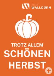 Plakat mit Kürbissymbol und dem Text trotz allem schönen Herbst