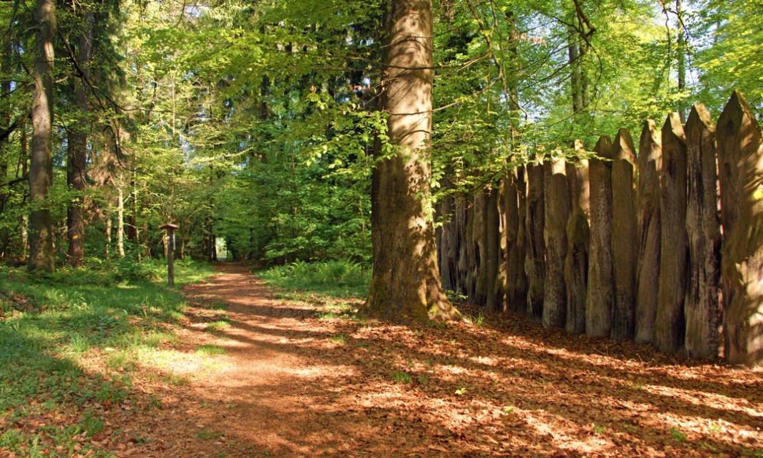 Römische Palisadenwand mit großen und angespitzten Baumstämmen im Stadtwald.