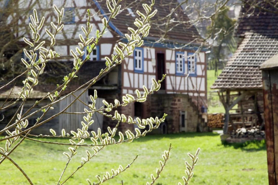 Das Odenwälder Freilandmuseum Walldürn mit seinen bunten Häuser.